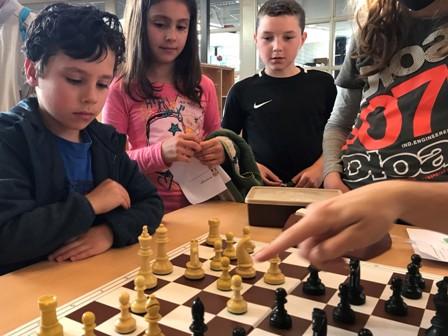 cursus schaken